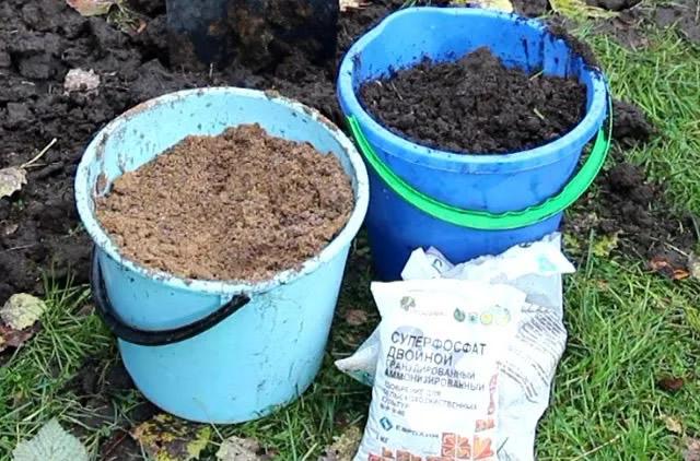 Внесение удобрений при посадке малины