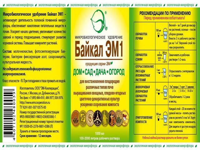 Подкормка малины препаратом Байкал ЭМ1