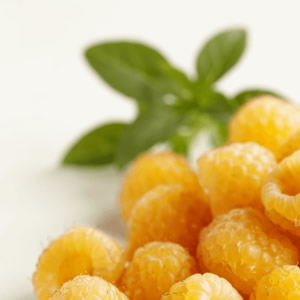Ягодки желтоплодной малины Голден Квин