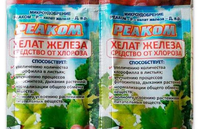 Хелат железа от хлороза малины