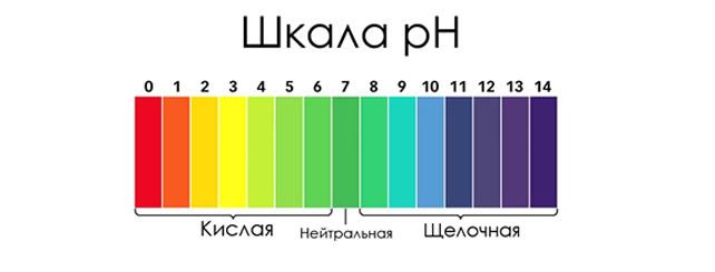 Шкала ph для посадки ежевики