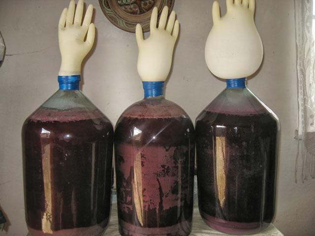 Вино из ежевики. Процесс сбраживания