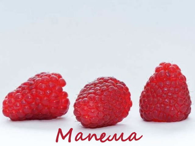 Плоды урожайного сорта малины Мапема