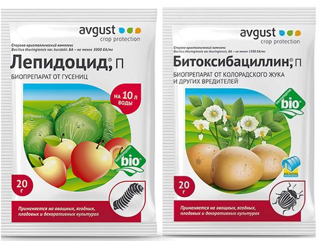 Биологические препараты для борьбы с червями на малине